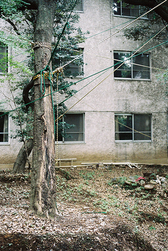 From Hanezawa Garden (MACK, 2015), photographs by Anders Edström